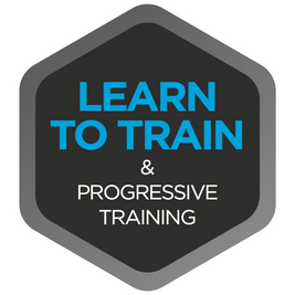 Learn to Train